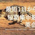 東京で英会話を最短1日から学べる超短期集中講座8選【2021年】